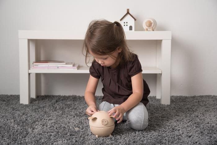 https://www.ekomaluch.pl/product-zul-18555-Skarbonka-swinka-kolor-naturalny-Plan-Toys-R.html